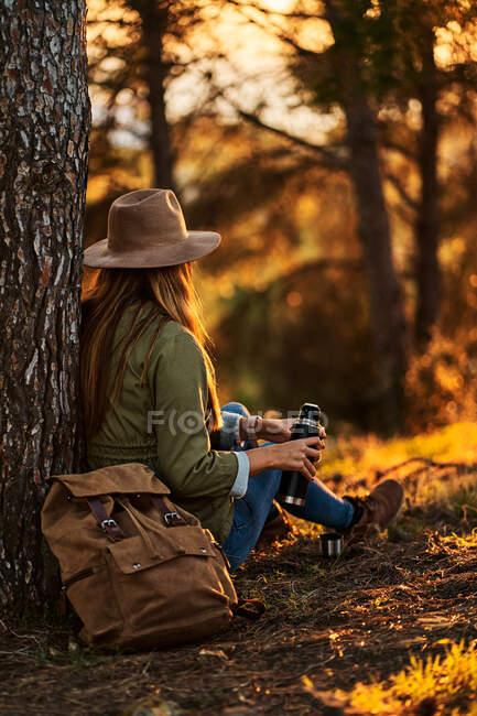 Anonyme Reisende in Freizeitkleidung und Hut sitzen in der Dämmerung mit heißem Tee aus der Thermoskanne am Baumstamm im grünen Wald — Stockfoto