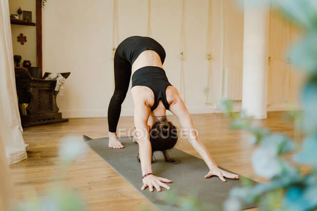 Back view of anonymous flexible female in sportswear standing in Adho Mukha Svanasana pose while practicing yoga in house — стоковое фото