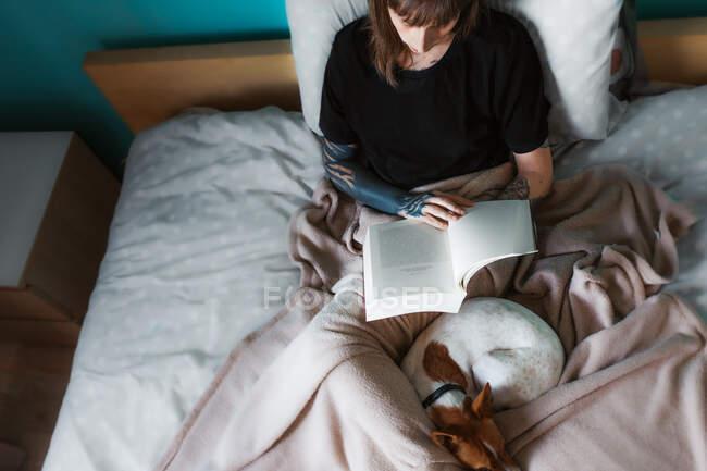 Dall'alto raccolto focalizzato femminile in camicia nera e braccio tatuato appoggiato su letto accogliente con cane addormentato carino e lettura libro interessante — Foto stock