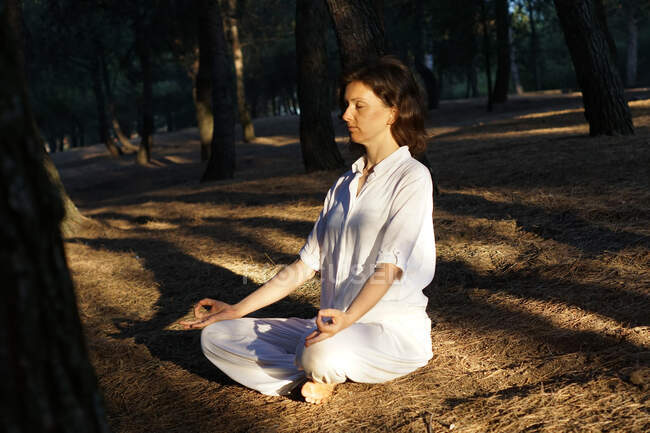 Side view of calm barefooted adult female in casual clothes meditating with closed eyes in Lotus asana while sitting on ground in forest on sunny day and practicing yoga — Stock Photo