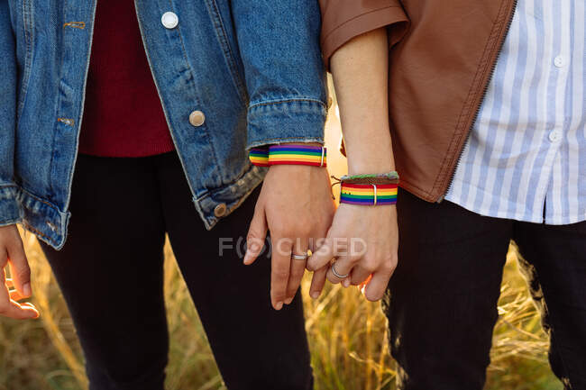 Crop unrecognizable couple of lesbian women wearing rainbow bracelets holding hands tenderly while standing in field at sunset — Stock Photo