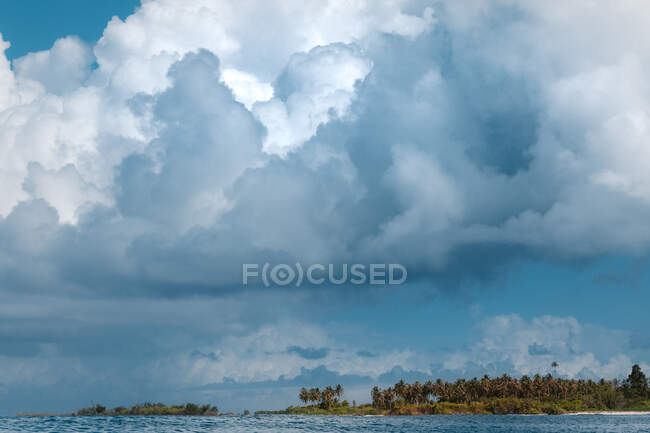 Picturesque view of idyllic island with tropical green trees on sandy beach surrounded by blue sea against clear sky in Indonesia — Stock Photo