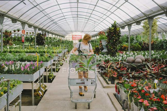 Giovane cliente donna in maschera protettiva per la prevenzione del coronavirus con carrello della spesa facendo acquisti nel mercato del giardinaggio e scegliendo piante d'appartamento all'interno della serra — Foto stock