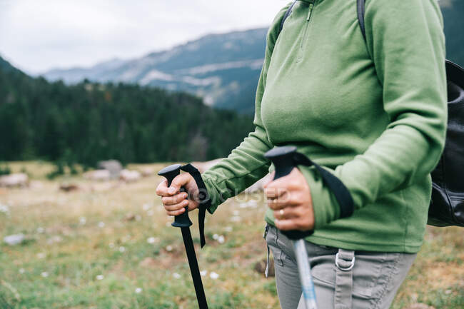 Side view of cropped anonymous female hiker in casual clothes with backpack and Nordic walk poles standing in picturesque highlands — Stock Photo
