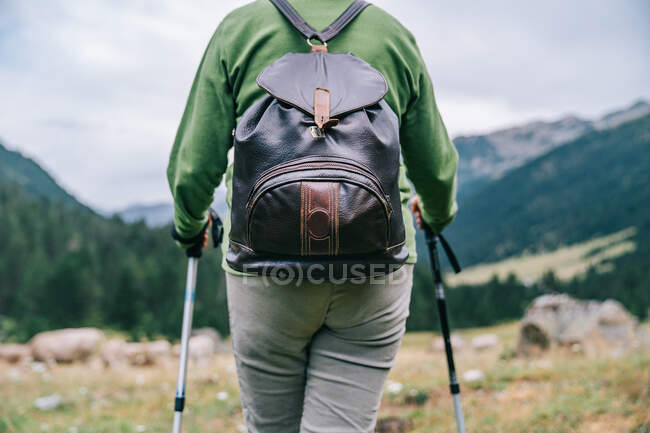 Cropped back view of anonymous female hiker in casual clothes with backpack and Nordic walk poles standing in picturesque highlands — Stock Photo