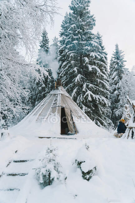 Traditional Sami tent placed in winter forest near trees covered with hoarfrost and snow against cloudy sky — Stock Photo