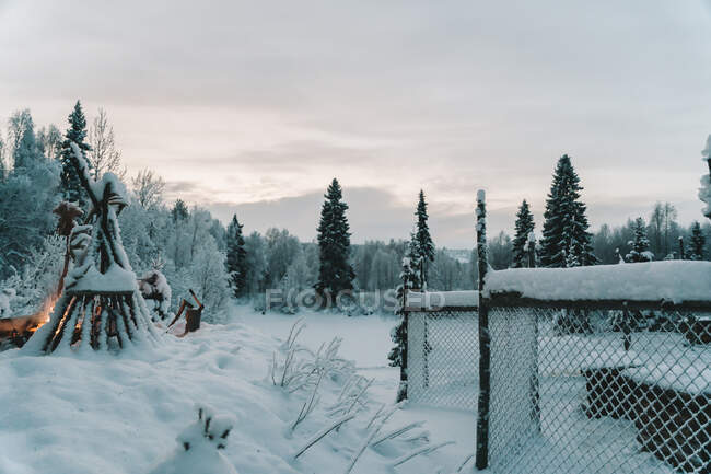 Scenic view of lush snowy coniferous trees against tipi with wooden poles near bonfire in wintertime — Stock Photo