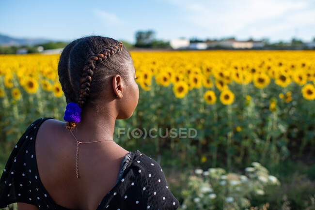 Back view of unrecognizable African American female in dress standing on background of blossoming sunflowers in field and enjoying summer in countryside — Stock Photo
