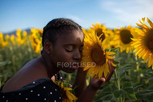 Vista laterale della tranquilla femmina afroamericana delicatamente toccante girasole in fiore mentre si gode la natura in campo in estate — Foto stock