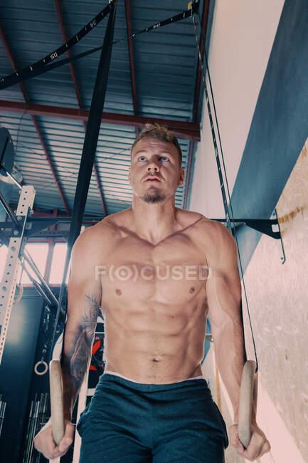 Bajo ángulo de macho atlético concentrado con torso desnudo haciendo ejercicios abdominales en anillos gimnásticos durante el entrenamiento funcional en el gimnasio - foto de stock