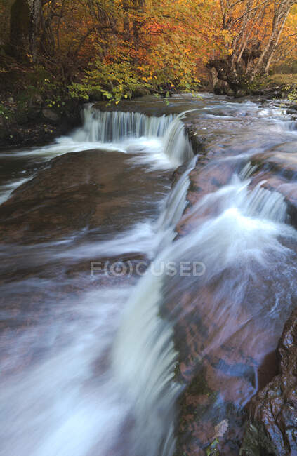 Long exposure picturesque scenery of shallow rapid stream flowing among rough boulders between deciduous trees on autumn day — Stock Photo