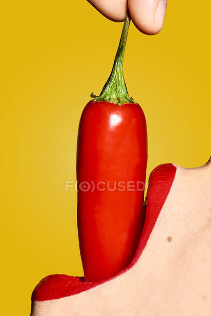 Crop anonymous woman mouth with red lipstick eating ripe chili pepper with pungent taste against yellow background — Stock Photo