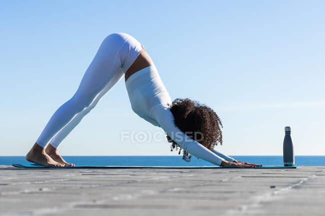 Full body side view of focused female standing on Adho mukha svanasana pose on sports mat with zero waste bottle on embankment — Stock Photo