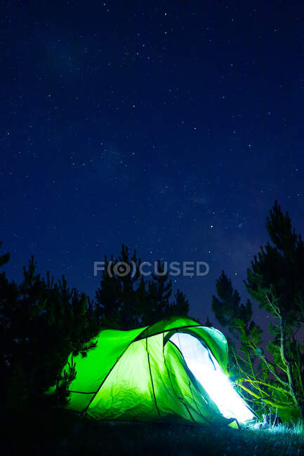 Green tent with shiny light among high tree silhouettes under starry sky at dusk — Stock Photo