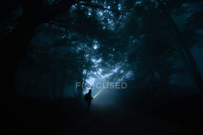 Side view of anonymous male trekker silhouette on pathway illuminating night woods with flashlight — Stock Photo