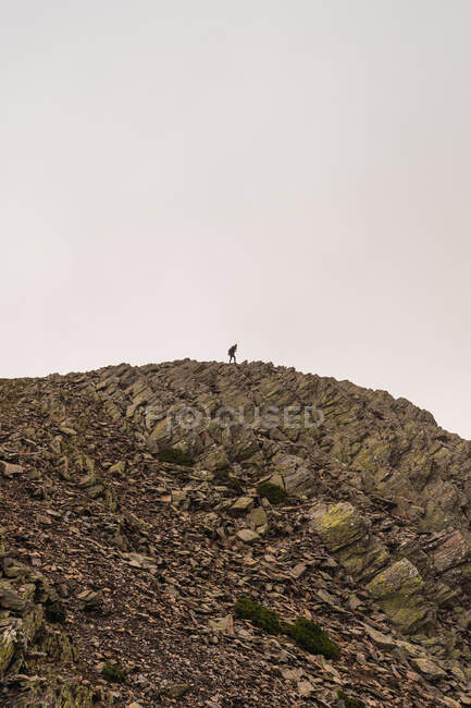 Side view of anonymous tourist strolling on mount with dry rough surface during trip in daylight — Stock Photo