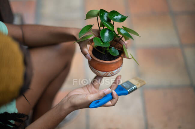 Cropped unrecognizable African American female gardener painting ceramic pot with Kalanchoe flower while working in hothouse — Stock Photo