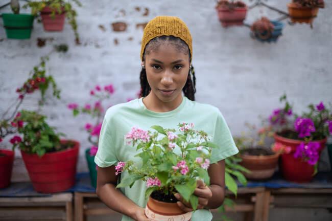 Delizioso giardiniere nero femmina in piedi in serra con fiori in fiore in vaso di ceramica guardando la fotocamera — Foto stock