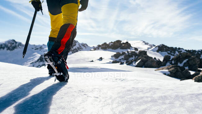 Back view of crop anonymous mountaineer in boots with crampons climbing snowy mountain slope in sunny day in highlands — Stock Photo