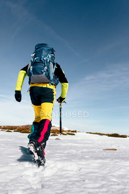 Back view of unrecognizable climber walking on slope of snow covered rocky mountain range in sunny weather — Stock Photo