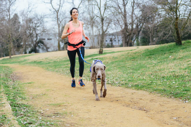 Full body of positive young fit female running together with Weimaraner dog during outdoor workout in park — Stock Photo