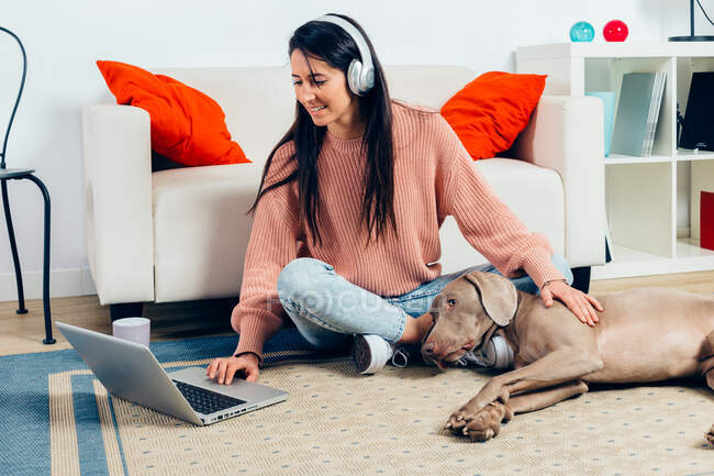 High angle full body of cheerful young female watching movie on laptop and stroking Weimaraner dog while spending free time together in living room — Stock Photo