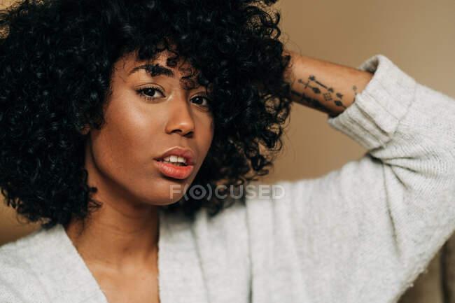 Впевнена афро-американська жінка з кучерявим волоссям сидить на дивані торкаючись волосся, дивлячись на камеру вдома. — стокове фото