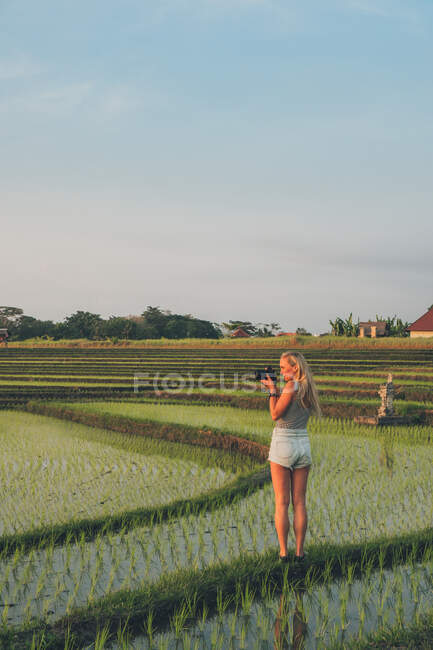 Blond woman taking photos in a rice field in Kajsa — Stock Photo