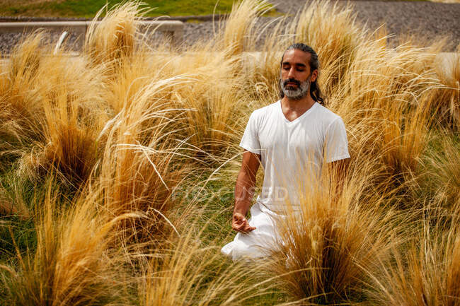 Unshaven Hispanic male in white apparel sitting with closed eyes during meditation among golden grass in daylight — Stock Photo