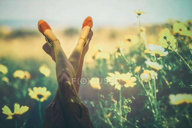 Anonymous female in summer shoes swinging legs against projection of field with yellow flowers — Stock Photo