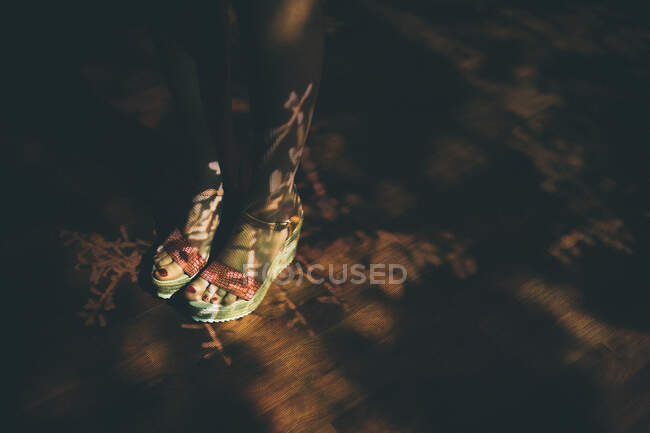 From above anonymous female in stylish sandals standing on lumber floor with projection of twigs — Stock Photo
