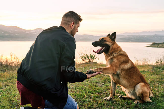 Side view of loyal German Shepherd dog giving paw to content male owner near lake on background of sundown sky — Stock Photo