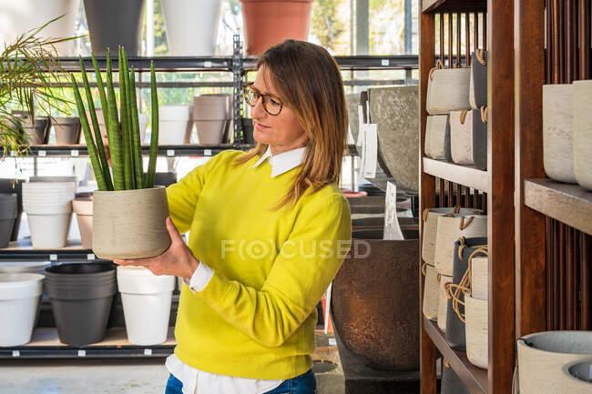 Cliente feminino de pé com Sansevieria cylindrica em panela durante as compras no centro do jardim — Fotografia de Stock