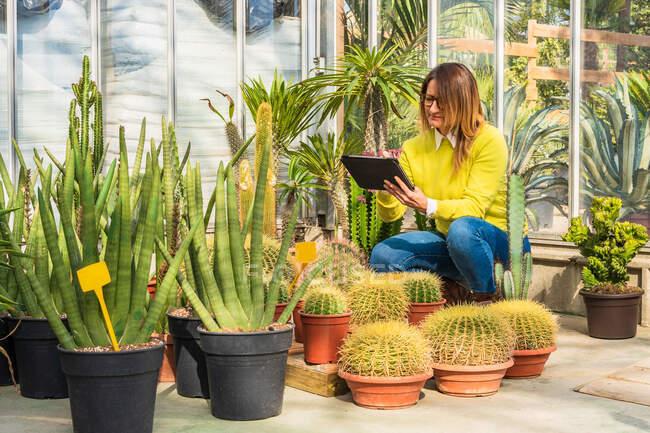 Giardiniere femminile utilizzando tablet moderno, mentre il conteggio delle piante e lavorare nel centro del giardino — Foto stock