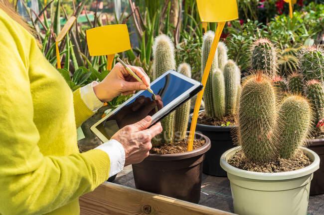Gärtnerin mit moderner Tablette ernten, während sie Pflanzen zählt und im Gartencenter arbeitet — Stockfoto