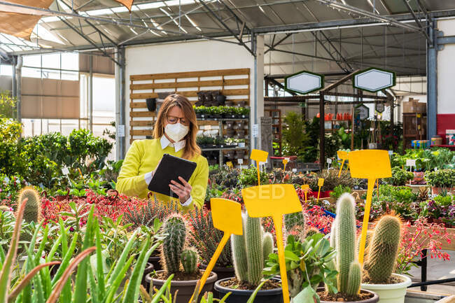 Occupato giardiniere femminile in maschera in piedi vicino a varie piante e tablet di navigazione mentre si lavora nel centro del giardino — Foto stock