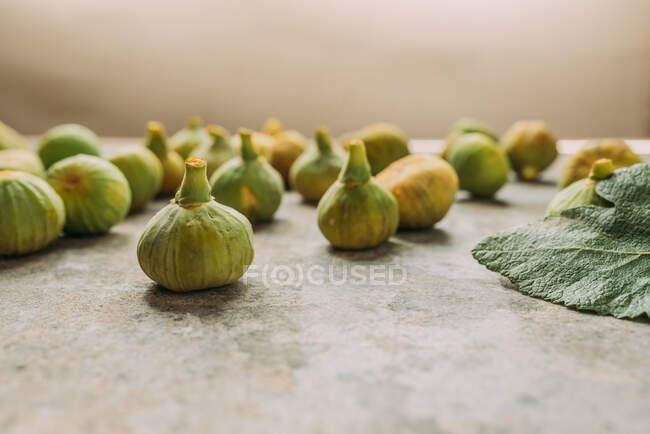 Ripe sweet green figs, freshly harvested from domestic tree, on table with grunge texture. Also known as ripe white figs — Stock Photo