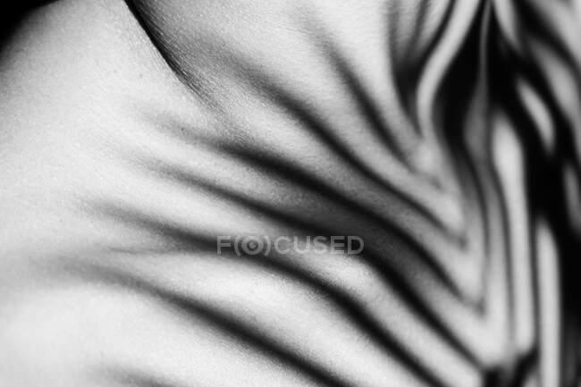 Чорно-білий врожай Анонімні ніжні жінки з рослинною тінню на грудях на сонці — стокове фото