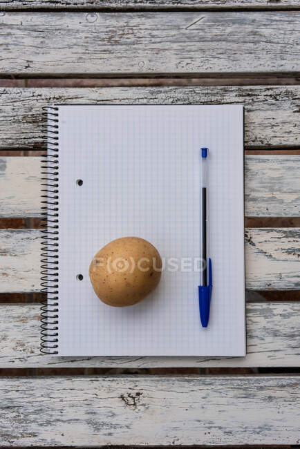 Вид сверху один картофель помещен на открытый блокнот с пустыми страницами на деревянном столе — стоковое фото