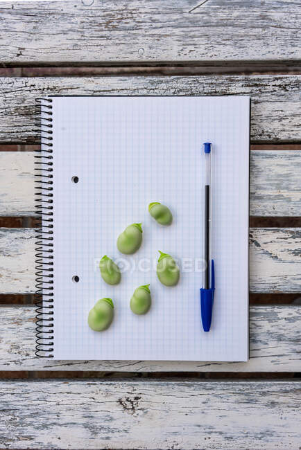 From above of raw green beans and pen placed on notepad on wooden table — Stock Photo
