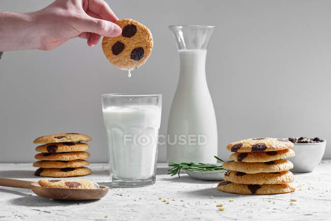 Crop anonymous person dipping delicious sweet homemade cookies with chocolate chips into glass of fresh milk — Stock Photo