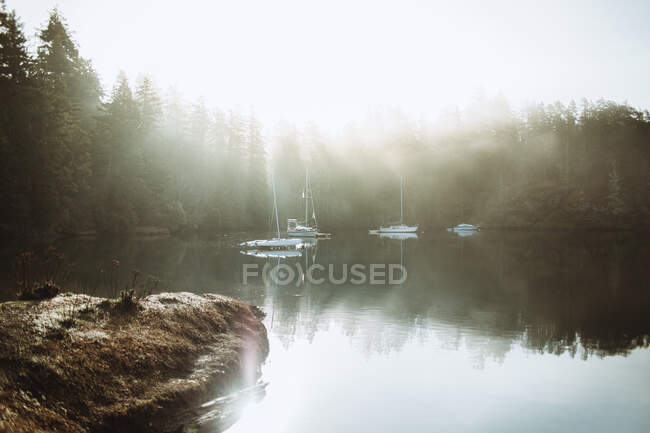 Bonito paisaje de un lago con algunos barcos en un día de niebla - foto de stock