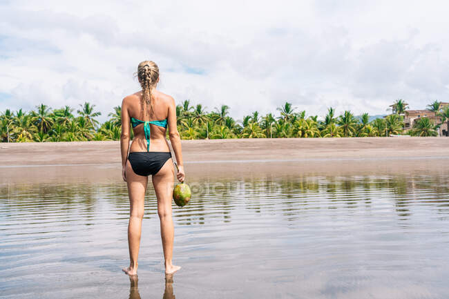 Back view of anonymous female in bikini carrying fresh coconut while standing in clean sea water near shore on tropical resort — Stock Photo
