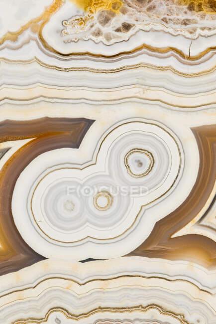 Fotografía de textura macro de los colores y patrones en una ágata de encaje de México - foto de stock