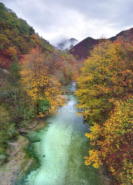 Incredibile vista drone del fiume che scorre attraverso boschi autunnali con alberi colorati negli altopiani nelle giornate nuvolose — Foto stock