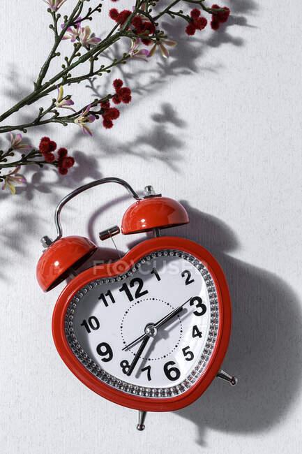 Зверху - червоний будильник у формі серця і купка свіжих лавандових квітів у вазі, розміщених на білому фоні у студії. — стокове фото