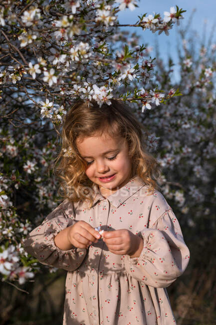 Adorable smiling little child in dress standing near blossoming tree with flowers in spring park and looking down — Stock Photo