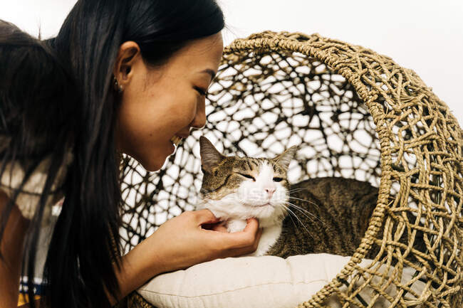 Side view of crop cheerful ethnic female caressing charming cat resting in wicker house — Stock Photo