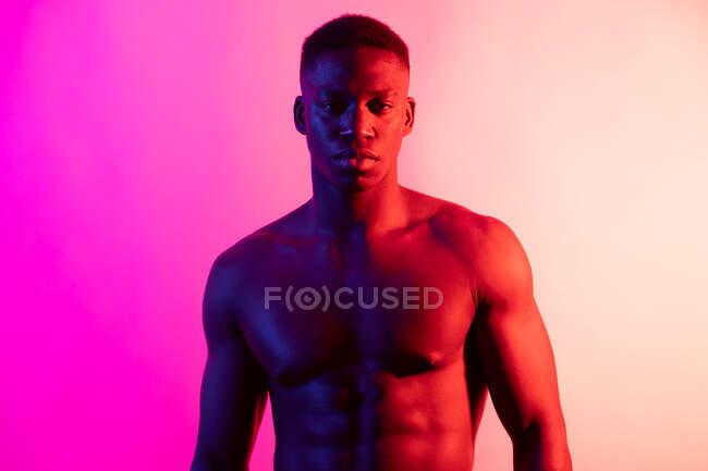 Joven atleta masculino afroamericano serio con el torso desnudo mirando la cámara en el fondo rosa en el estudio de neón - foto de stock