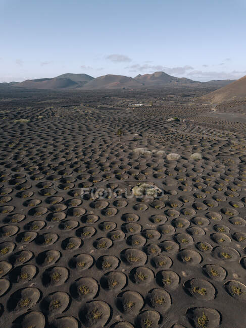 Magnificent aerial view of La Geria vineyards in volcanic area on Lanzarote — Stock Photo